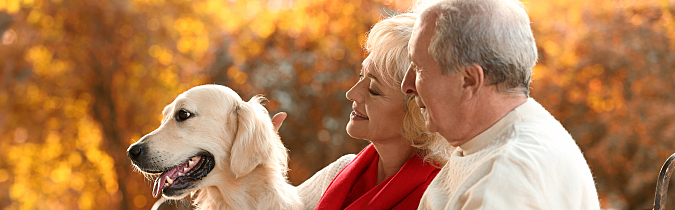 wellness65-article_senior-couple-with-big-dog_181031